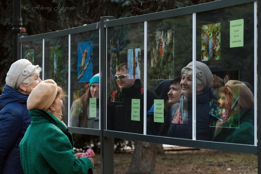 Харьков индивидуалки праститутки фота цены тел