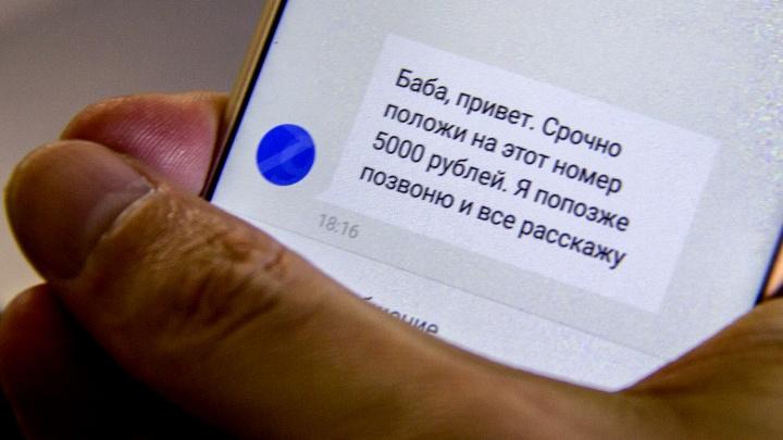 В Новосибирской области случился всплеск грабежей и мошенничеств
