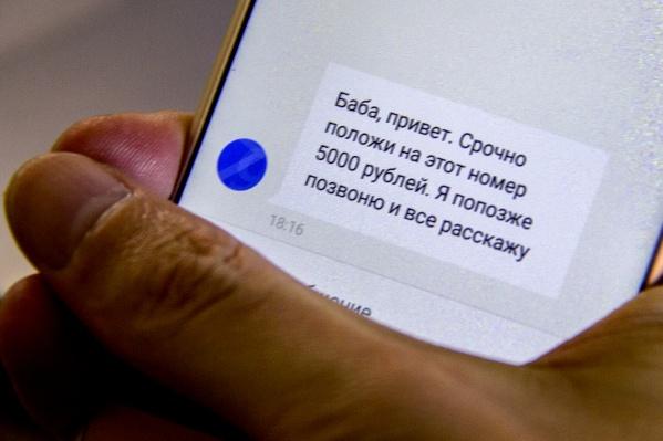 За год мошенники обманули новосибирцев 5909 раз<br>