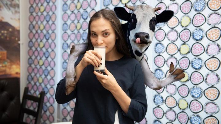 Коровы страдают, люди толстеют: почему в Екатеринбурге стало модно быть против молока
