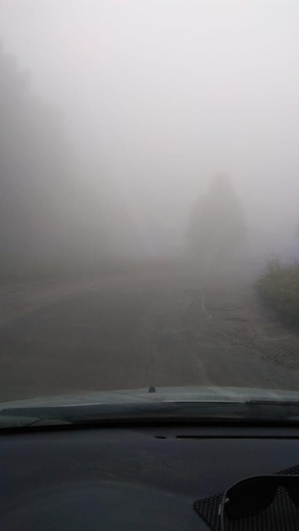 В таком тумане главное — не наткнуться на ёжика. Ну или на лошадку, кому как повезёт