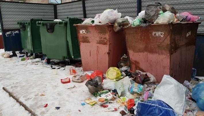 «Наш оптимизм растаял на глазах»: волгоградцев оставили один на один со сломанными баками для мусора