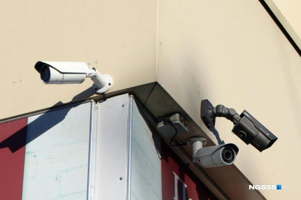 В обзор видеокамер попадал соседский двор