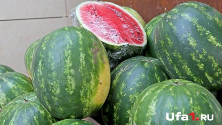 Фермерские рынки Уфы: 10 сельхозярмарок выходного дня