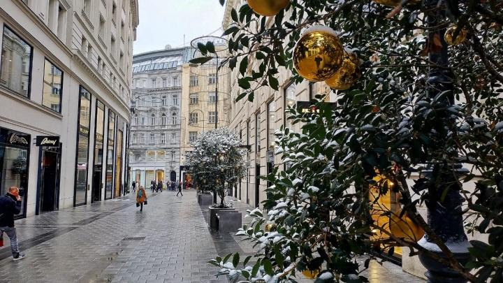 В Новосибирске откроют почётное консульство Австрии