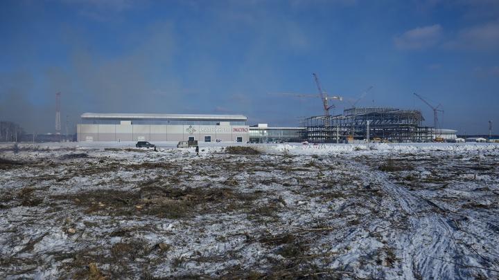 Новое лицо Россельбана: возле «Екатеринбург-Экспо» за две недели вырубили весь лес