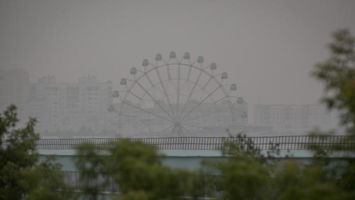 Из смога в воду: в задымлённый Новосибирск придут дожди с грозами