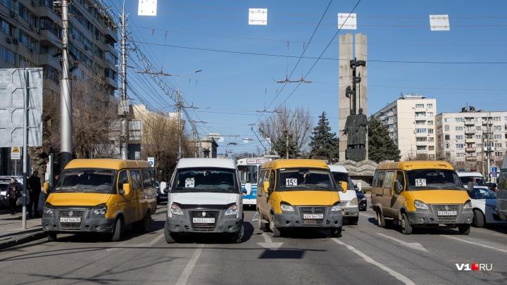 «Арестов не было из-за СМИ»: бастующие маршрутчики в центре Волгограда в фоторепортажеV1.RU