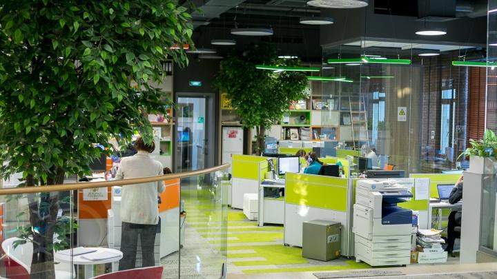 «Когда на работе как дома»: три красивых и необычных офиса в Красноярске, где хочется работать