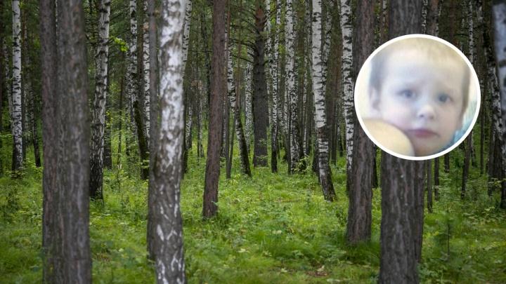 Что известно о пропаже в тайге 4-летнего Ильи Кобелева