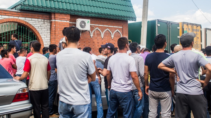 Сами справятся: областные власти дадут иностранцам меньше разрешений на работу