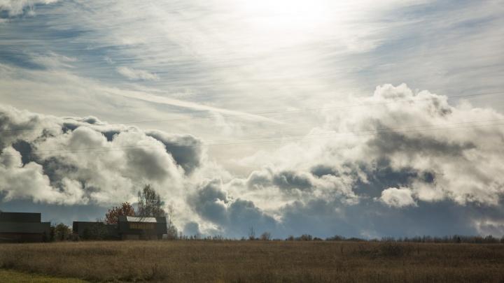 Скандинавский холод вместо дождей с Атлантики: синоптики предупредили ярославцев о смене погоды
