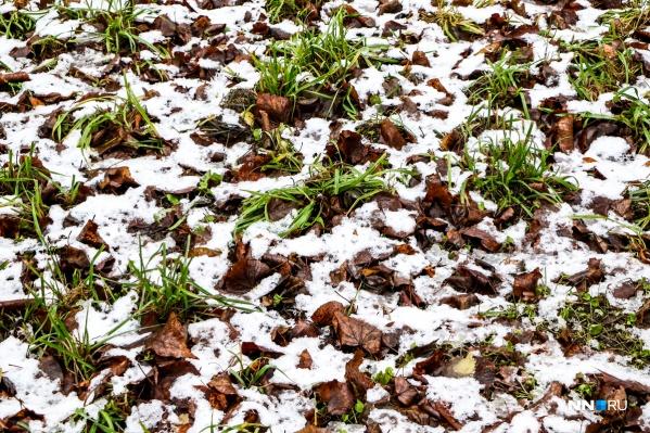 Снег лёг ненадолго<br>