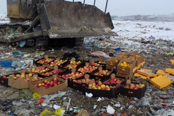 Заграничные продукты в 2014 году были запрещены к ввозу из-за санкций