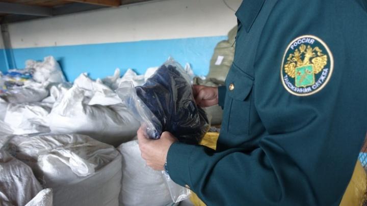Gucci в Кургане: 8250 единиц контрафактной одежды задержали таможенники