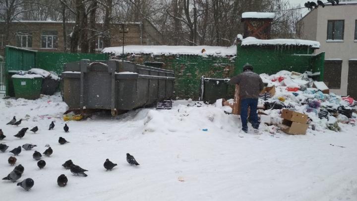 «Подумаем об этом завтра»: почему после старта мусорной реформы Ростов захлёбывается в отходах