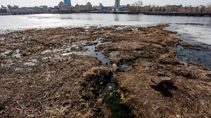 «Это было неожиданностью для нас»: челябинское метро спровоцировало рост островов на реке Миасс