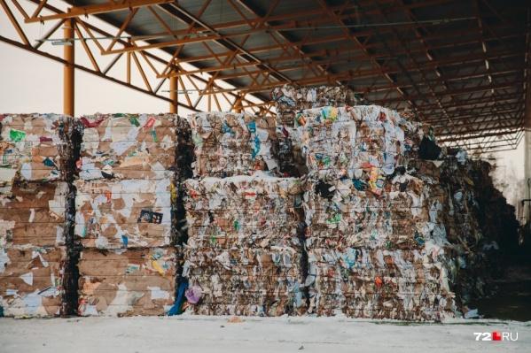 В России упростили процедуру сжигания твердых коммунальных отходов, которые сейчас пытаются сортировать