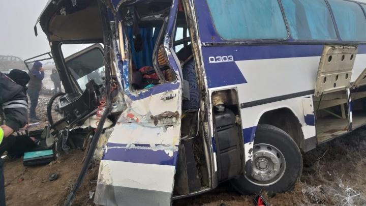 Автобус с пассажирами врезался в КАМАЗ на трассе: пострадали три человека, 50 ждут помощи