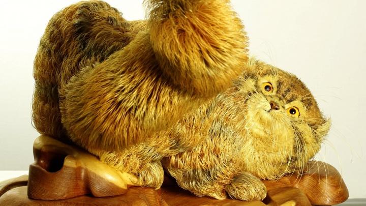 В Новосибирск привезли фигуру кота, собранную сельским трудовиком из миллиона стружек