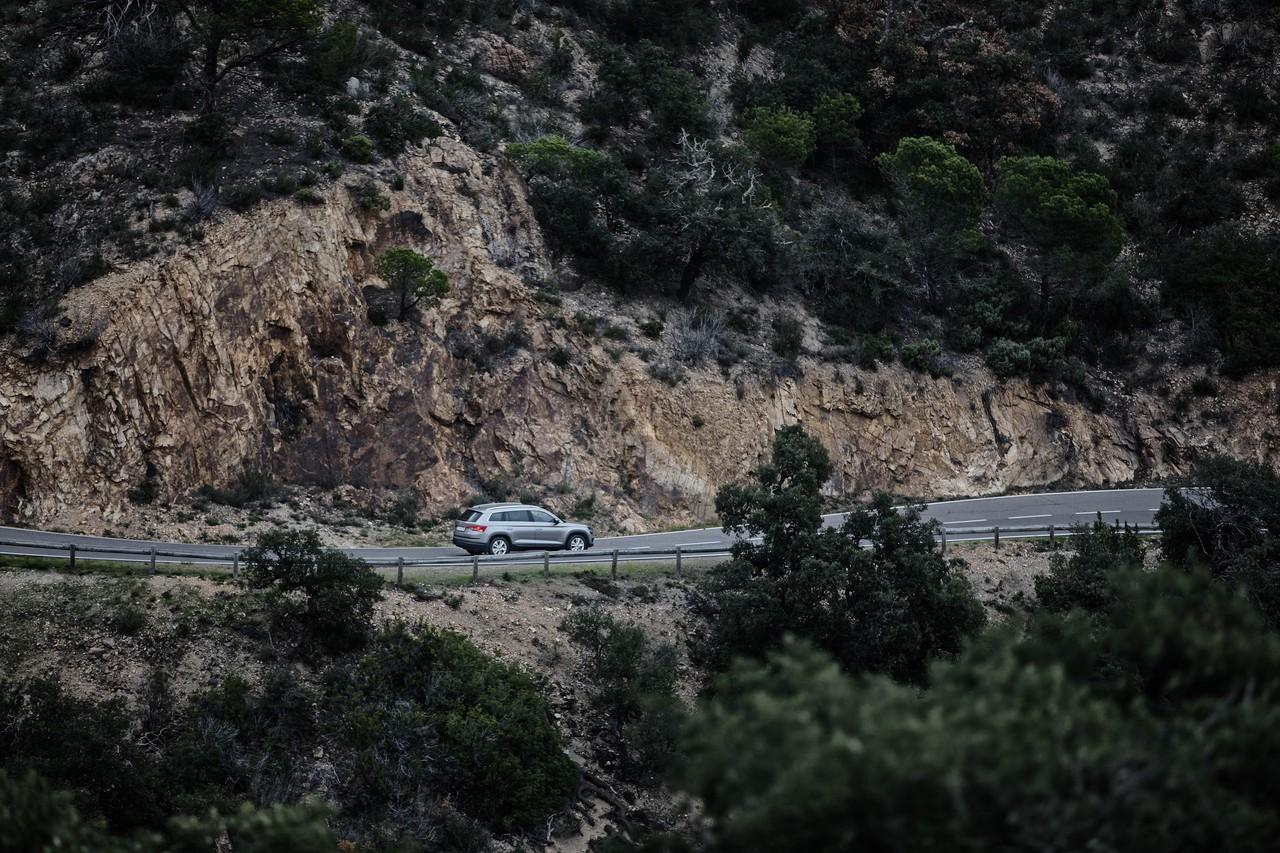 Большая часть дорог огорожена барьером, но встречаются и заманчивые бреши