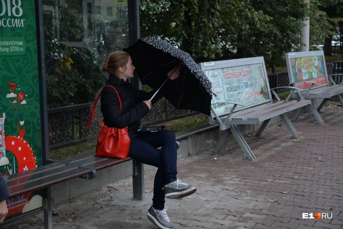 В области ожидаются дожди и сильный ветер