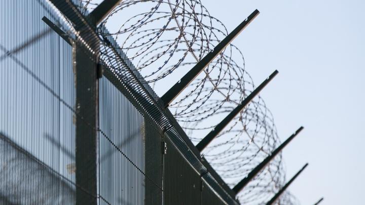 «Приревновал любимую»: в Волгограде заключённых отправили в колонию строгого режима за побег