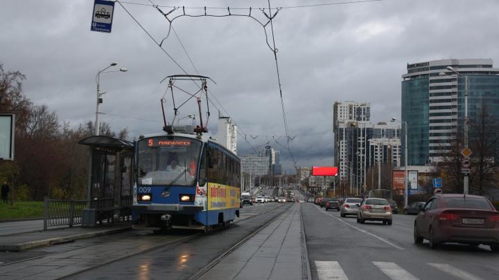 «Нюансов много»: как трамваи протестировали уникальные рельсы на Макаровском мосту