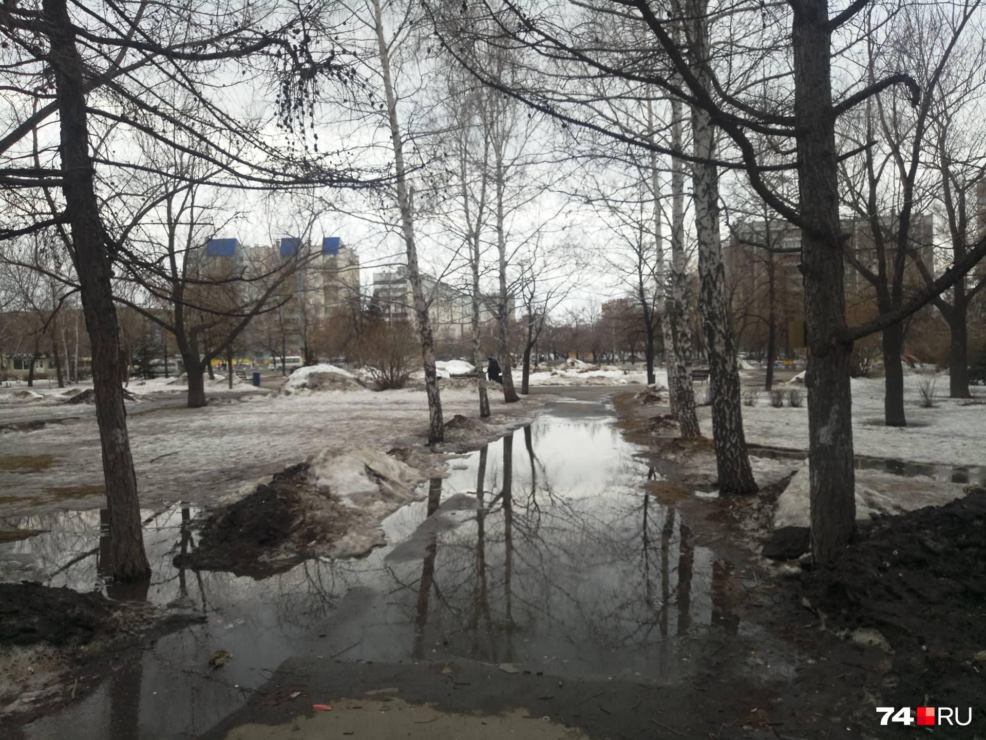 В сквере на Комсомольском проспекте достаточно скверная картина