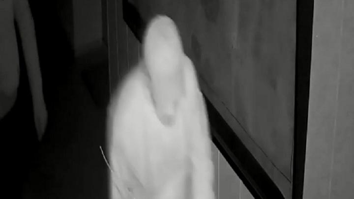 Волгоградская полиция разыскивает обокравших офис преступников — видео
