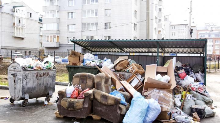 Мэр приказал передвинуть мусорные контейнеры поближе к жилым домам