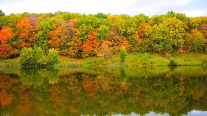 Разноцветный Щелоковский хутор: 7 снимков, пропитанных осенью