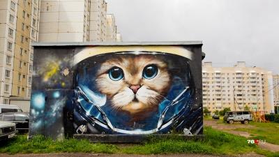 С ними город стал ярче: 14 необычных граффити на улицах Ярославля
