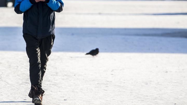 Волонтёры предупредили новосибирцев о фейковом розыске пропавшего ребёнка