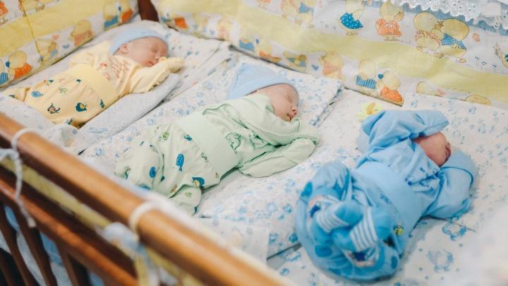 Коробка раздора: что дарят власти новорожденным в Ярославле и в других регионах