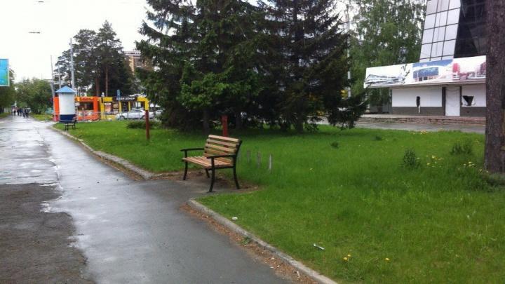 На улицу Богдана Хмельницкого вернулись лавочки