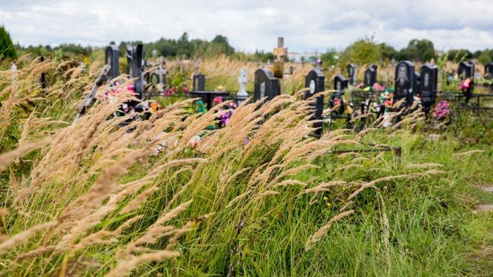 Тело лежало дома три дня: в Ярославской области мужчина сам похоронил свою жену, никому не рассказав
