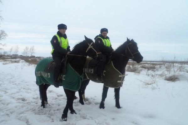 Во время профилактических мероприятий конный экипаж полиции заметил подозрительного мужчину