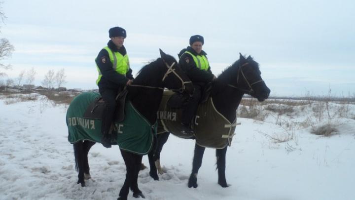 Полицейские на конях догнали и задержали убегающего в лес наркомана