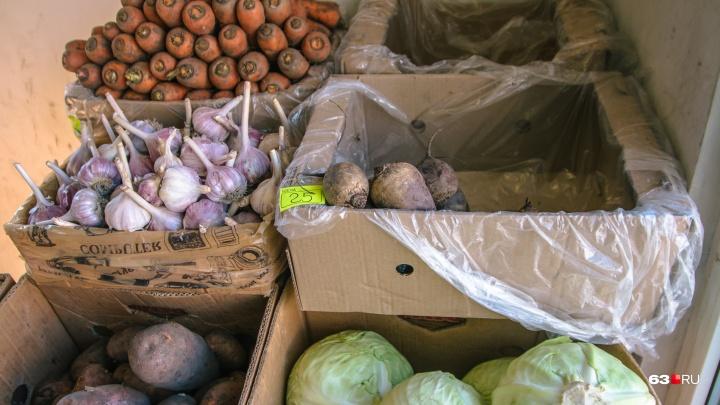 В Самарской области сняли с прилавков более 100 килограммов испорченных овощей