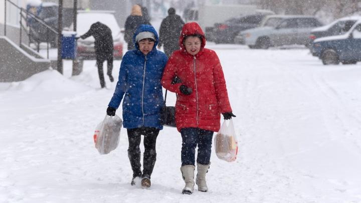 Метель, туман и гололёд: Волгоградскую область ждут морозы до-25 ºС и сильный ветер