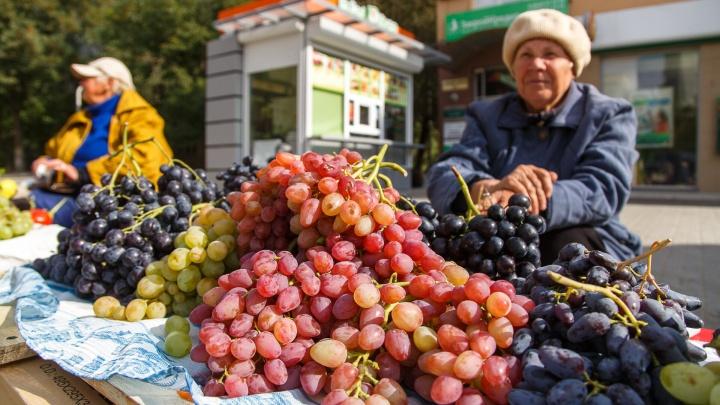 В Волгограде разрешили торговать с паровозов, лотков и автоприцепов