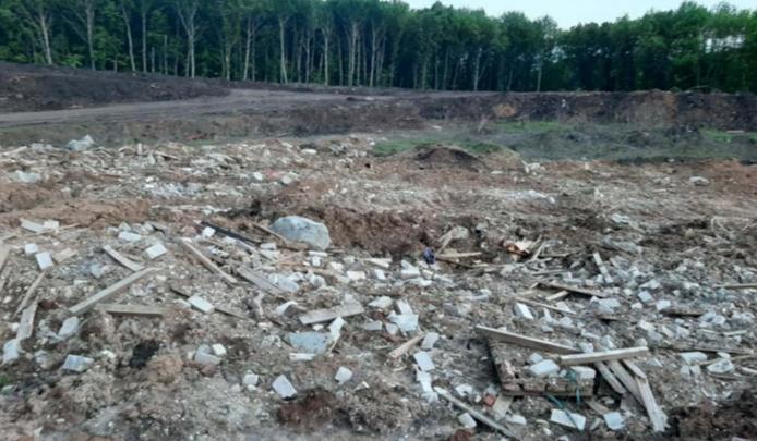 Новая Самара рискует остаться на 10 лет без деревьев