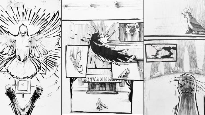 Омский художник нарисовал комикс о голубе, который сам пришёл к ветеринару