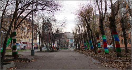 Вандалы сняли теплые «свитера» с деревьев возле ТЮЗа