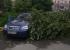 В нескольких районах Екатеринбурга из-за сильного ветраупали деревья