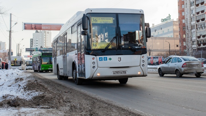 В Перми изменится расписание шести автобусных маршрутов