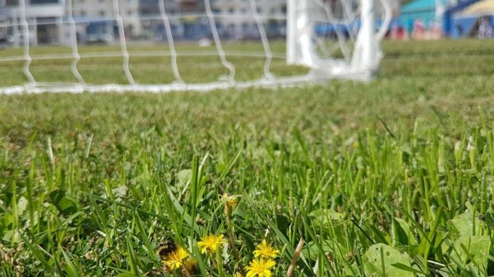 В эти выходные Курган будет играть в футбол