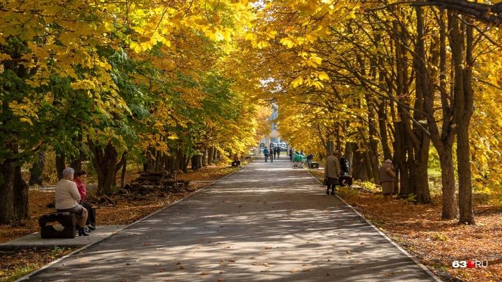 Все краски осени: гуляем по Ботаническому саду