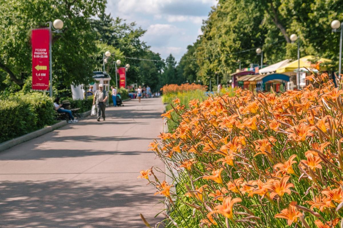 Специалисты обработали парки областной столицы от переносчиков энцефалита
